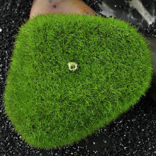 5Pcs Artificial Moss Stones Grass Plant Poted Home Garden Landscape Decoration