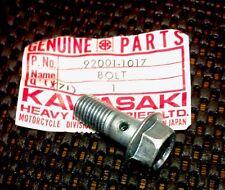 1978-1983 Kawasaki KZ440 Cylinder Oil Line10x25 Banjo Bolt 92001-1017 NOS OEM
