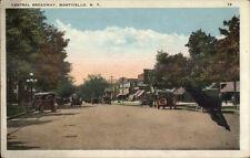 Monticello NY Central Broadway c1920 Postcard