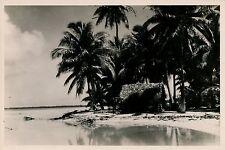TAHITI c. 1930 - Paysage - T1