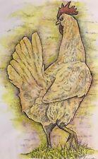 RUNAWAY HEN - Small, art reproduction, artist, ink, realism, birds