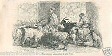 Marchande Lait de Chèvre Marche Saint-Maur Popincourt Paris  GRAVURE PRINT 1866