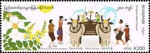Festivals in Myanmar: Thingyan Water Festival (MNH)