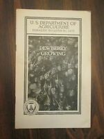 U.S. Department of Agriculture Farmer's Bulletin #1403 Dewberry Growing 1924