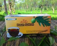 Artocarpus Altilis Breadfruit Leaves Pure Herbal Halal Tea 100 TeaBags