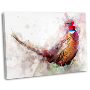 Pheasant Abstract Watercolour Canvas Print Framed Bird Painting Art Picture