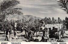 D32/ Tuscon Arizona Az Real Photo RPPC Postcard 1949 Desert Treasures Farming