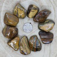 Lion Skin Quartz Tumblestones Crystals 100-106g Wholesale *CHOOSE YOUR OWN SET*