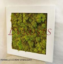 * Noch 08610 Licheni Lichene muschio color grigio pietra beige  35 gr.