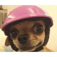 Pet Dog Ridding Cap Helmet ABS Plastic Doggie Puppy Bike Motorcycle Cosplay Hat