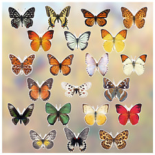 28 Pieces Large Size Anti-Collision Window Clings Butterfly Rose Owl Bird Window