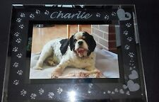 PERSONLISED HAND ENGRAVED GLASS PHOTO FRAME PET CAT DOG MEMORIAL BIRTHDAY  GIFT