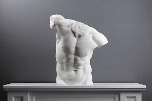 Male Torso Statue (20.5 inch / 52 cm)