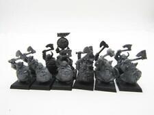 (5390) Dwarf Warriors Regiment Dwarfs Cities Of Sigmar Fantasy Warhammer