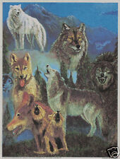 Matted Wolf Montage Foil Art Print~Affordable Art~8x10 Animal