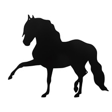 Andalusian Horse Wall Art Horses Decoration