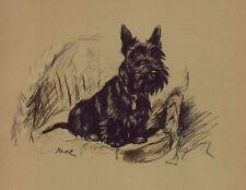 Scottish Terrier - Lucy Dawson Dog Print - MATTED