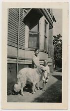 Borzoi Wolfhound Dog w Farm Girl & Boy vtg 1920's Snapshot photo