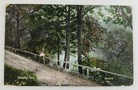 Postcard Dumpling Pond Mianus Connecticut Greenwich Lady Dirt Road 1910