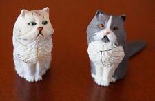 Two Japan New KAIYODO Furuta Choco Egg Animal Pet Miniature Persian Cats