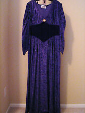 Witch Costume Women's Medium Purple Velvet Fancy Dress Cosplay