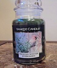 Yankee Candle   Frosted Winter Evergreen   22 oz  1 Single  NEW   Free Shipping