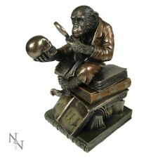 Bronze Darwin Monkey with Skull Figurine Statue Science Room Decor Gift 17cm ART