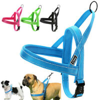 No Pull Dog Harness Reflective Stitching Quick Fit Nylon Small Dog Harness Blue