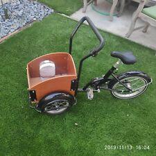 Cargo bike for kids