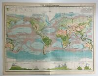 Antique Map Of The World Vegetation C1900