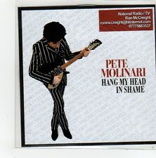 (FL798) Pete Molinary, Hang My Head In Shame - 2014 DJ CD