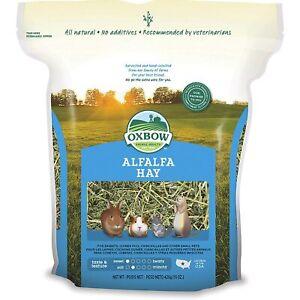 Oxbow Alfalfa Hay fieno per conigli giovani roditori a base di erba medica 425g