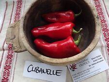 Paprika Cubanelle 5+ Samen - Süß und FEIN!