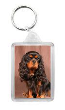 Cavalier King Charles Spaniel (Black & Tan) Dog Photo Keyring Keyfob Key Ring