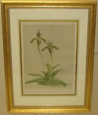 Antique HENRY GEORGE MOON 'Cypripedium SLIPPER ORCHIDS' Flower CHROMOLITHOGRAPH