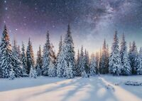 A1| Starry Winter Forest Poster Print Size 60 x 90cm Forests Poster Gift #16743