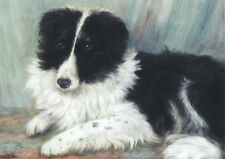 Border Collie Puppy Dog by Maud Hezps 1871 - LARGE BLANK NOTE CARDS