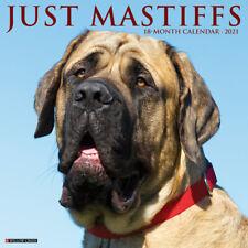Just Mastiffs (dog breed calendar) 2021 Wall Calendar (Free Shipping)