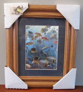 vtg 1970s iridescent framed fish picture
