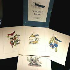 "Set 4 Audubon Birds of America 1840 Reproduction Hand Color Lithographs 16 x 20"""