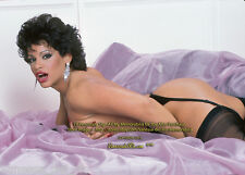 Vanessa del Rio Collectible Photo Lusty LAVENDER Sheets RARE! 1987 AFT BUY w/COA