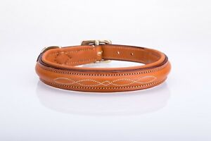 Half Raised, fancy stitched leather dog collar,  lined and padded.