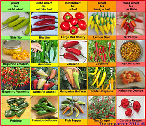 Chili Samen Sortiment 20 Sorten Jalapeno Charapita Carolina Reaper Saatgut