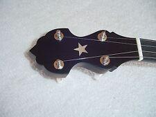 Bart Reiter Standard 5 String Open Back Banjo