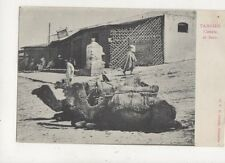 Tangier Camels At Soco North Africa Vintage U/B Postcard 909a