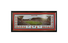 ST GEORGE DRAGONS NRL PREMIERS 2010 PANORAMIC GF GROUND AND PLAYERS FRAMED