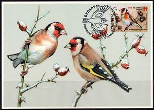 2018. Belarus. Bird of the year. European goldfinch. Maxi card