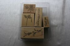 Stampin Up Artfully Asian Stamp Set great for Cardmaking Scrapbooking Brand New