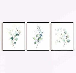 Botanical Fern  Leaf Monstera Eucalyptus Set Of Three Prints (1)