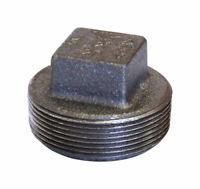 Anvil  Schedule 40  1/2 in. MPT  Malleable Iron  Square Head Plug